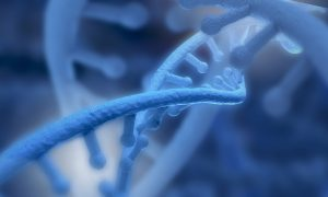 Mitochondrial DNA in Blood of Friedreich Ataxia Patients May Be a Biomarker, Study Suggests