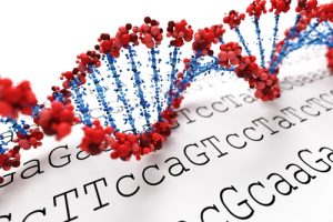 HFE Gene Mutation May Be Culprit in Peripheral Nerve Damage to Friedrich's Ataxia Patients
